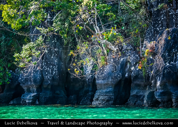 Malaysia - Kedah - Pulau Langkawi - Langkawi Island - Kilim Karst Geoforest Park - Located at the East of Langkawi Island -  Kilim Karst Geoforest Park is located at the East of Langkawi Island - Mangrove Forest at the intersection of land and sea - Mangrove forests support a wealth of life, from starfish to people - Caves