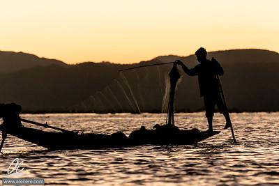 Leg paddling