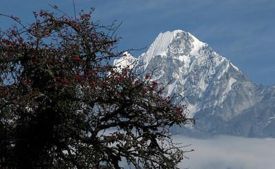 Nepal November 2010