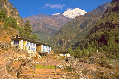 Teahouse along the trekking route
