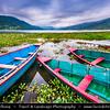 Asia - Nepal - Pokhara Valley - Lake Phewa - Pokhara - Lovely lakeside village, with colorful boats sailing through the water