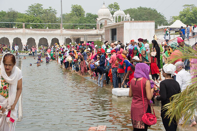 In the pool at Gurudwara Bangla Sahib, devotees go into the water, some for spiritual reason, some because of the 100°F heat.