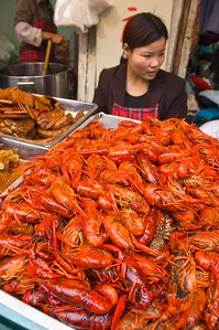 Xiao longxia meaning little lobsters