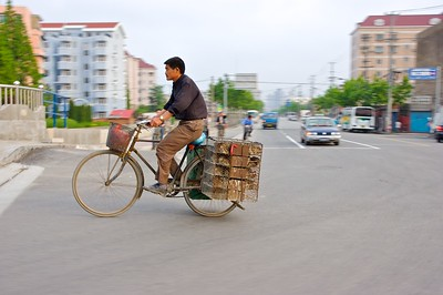 Nearly anything is transported by bicycle, including chickens.