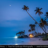 Asia - Sri Lanka - Ceylon - The Pearl of the Indian Ocean - Emerald Isle - Southern Province - Weligama - Fishing town on southern coast along the Indian Ocean - Soft sand beach with palm trees at Dusk - Twilight