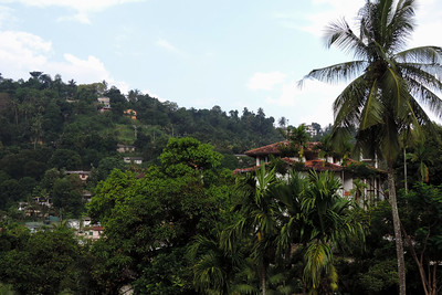 Kandy - View from the Royal Tourist Lodge garden