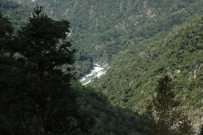 View from a trail in Yushan National Park