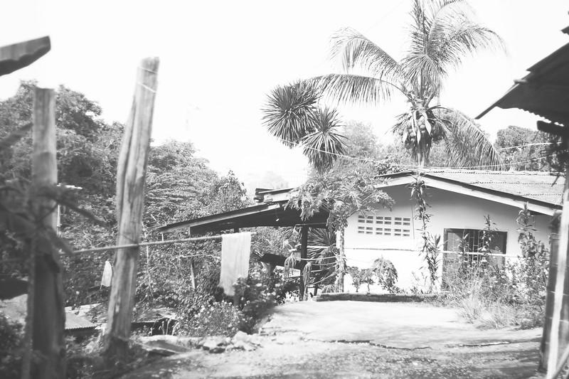 Monks' housing. November 2014
