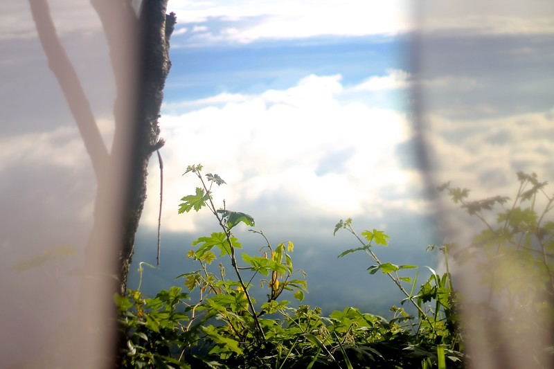 Camping at the top of the rice fields. I happened to wake up at sunrise to see the valley covered in clouds. August 2015