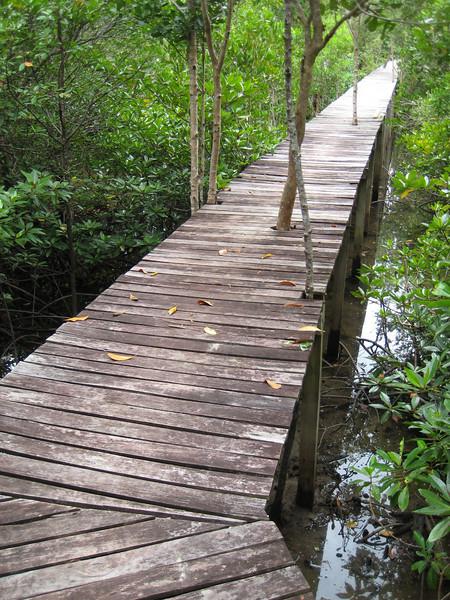 Thachatchai Nature Trail, Thailand