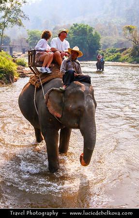 Thailand - Chiang Mai - Maetang Elephant Park & Elephant Safari