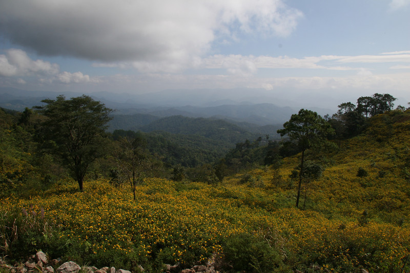 Mae Hong Song Flowered valley