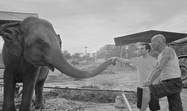 James, the elephant whisperer! © 898 Photography 2014