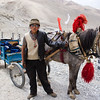 Cart Conductor on the road to the Everest