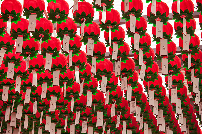 Rows and rows of red paper lanterns are located overhead at the Bongeunsa Buddhist temple in Seoul, South Korea which is one of the biggest and oldest temples in the country