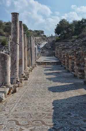 Moasaics, Ephesus