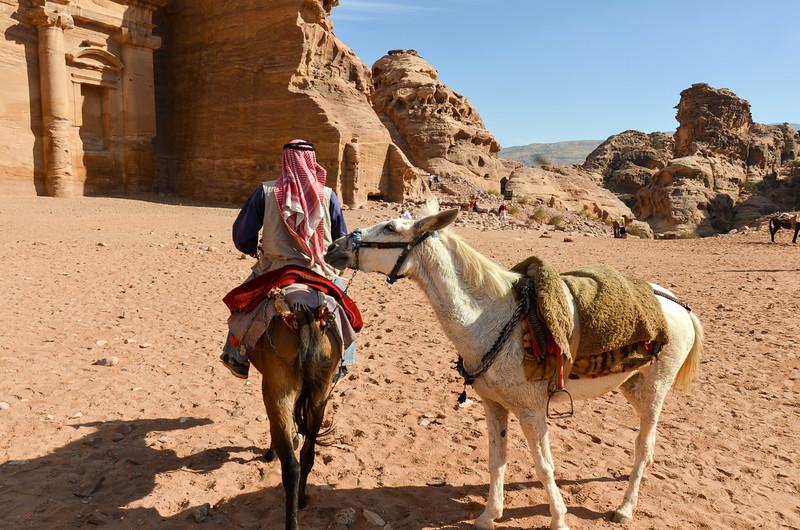 Bedouin Guide & Mules, Petra