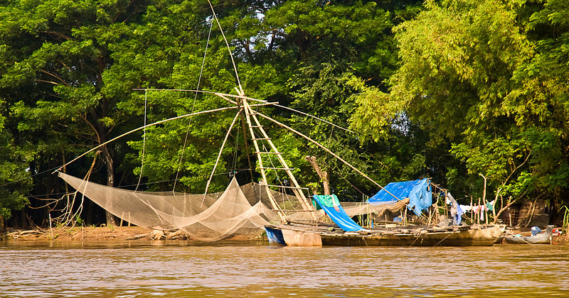 Others harvest some of the 1400 to 1700 species of fish in the Mekong.