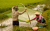Hand net fishing, Tay Ninh