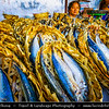 Vietnam - Ho Chi Minh City - Thành phố Hồ Chí Minh - Saigon - Sài Gòn - Traditional Markets in Old Part of the City