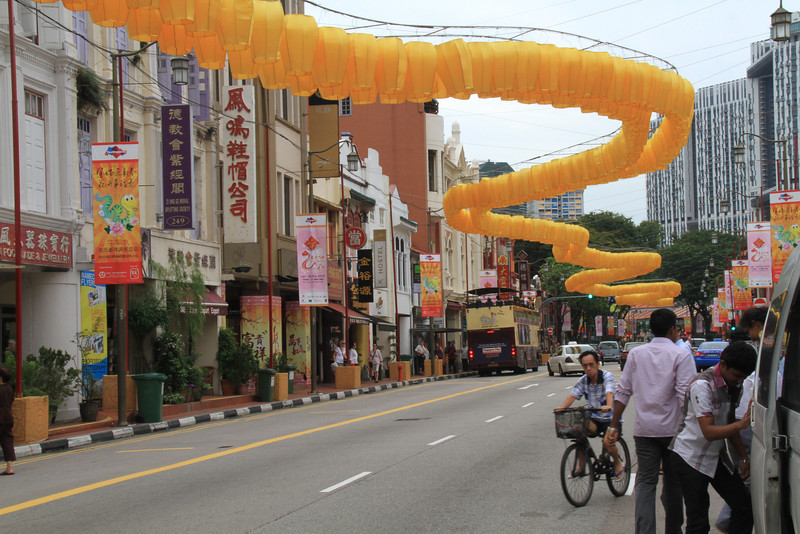 The Year of the Snake -- China Town during New Year