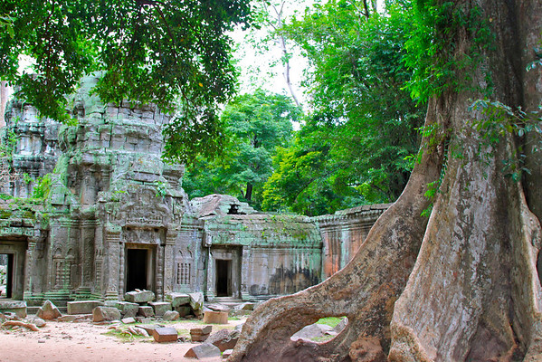 Ta Prohm Siem Reap, Cambodia July 2011