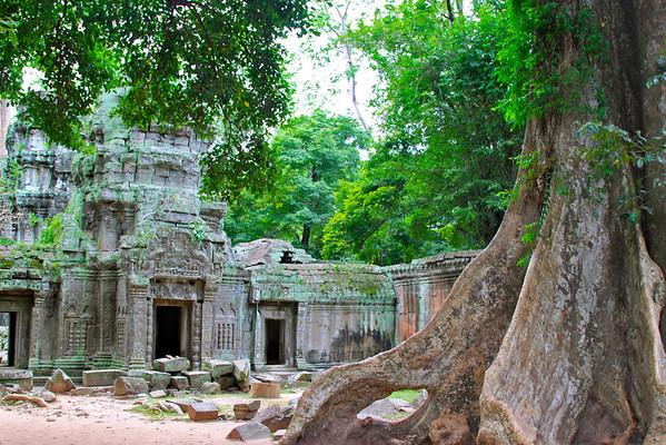 Ta Prohm Siem Reap, Cambodia July 2011