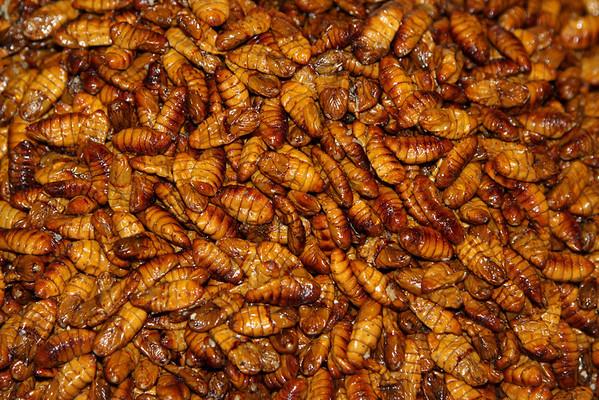 Thai Delicacies Chiang Mai, Thailand July 2011