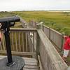 USA-Virginia-Assateague Island-salt marsh-Tom's Cove- visitors learn about the marsh life