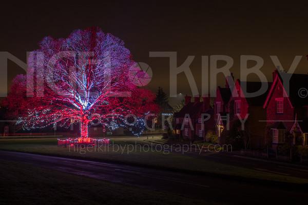 Astbury - Christmas Tree 2018