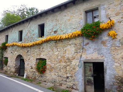 Asti: October 13