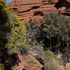The Garden of Eden, Kings Canyon