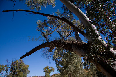 Uluru- Ayers Rock/ Australia