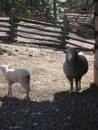Atlanta March 2008