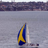 Sailboat cruising the harbor at Auckland, New Zealand.