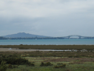 Harbour Bridge and Rangitoto in the background.