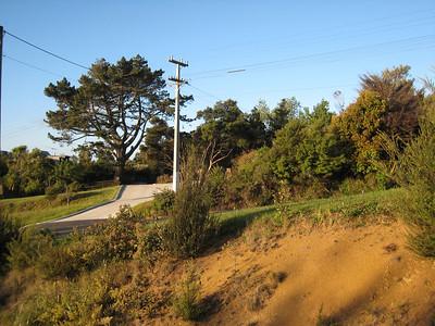 Looking onto McEntee Road.