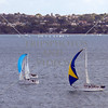 Sailboats cruising the harbor at Auckland, New Zealand.