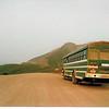 Big green bus in Denali National Park