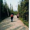 Nature walk in Denali