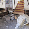 Inside a typical teepee of the time...