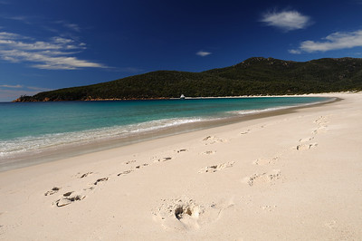 The white sand of Wineglass Bay