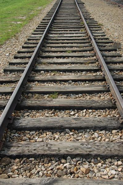 Birkenau tracks2-