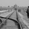 BW Birkenau tracks12