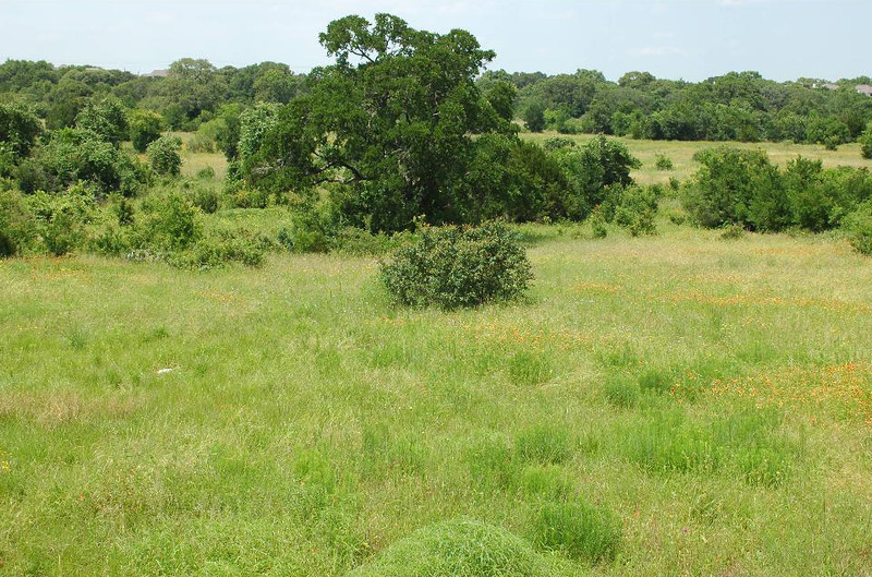 A fair amount of the property is grasses and woodlands.