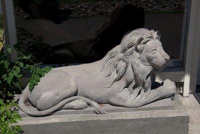 Lion at the Austin Motel
