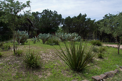 Gardens at the Austin Zoo