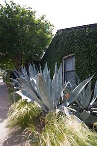 Outside the San Jose Motel