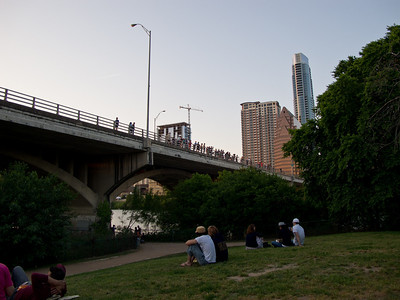 Waiting for the Bats