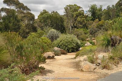 Canberra Botanic Gardens